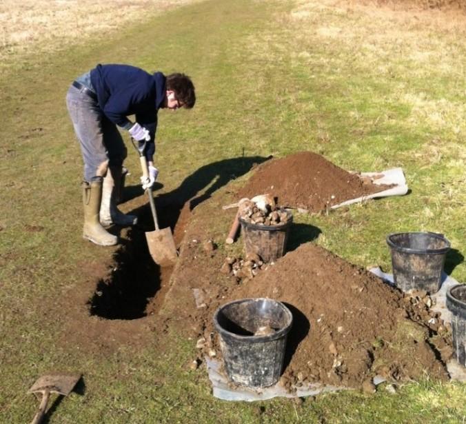 3.digging in sussex